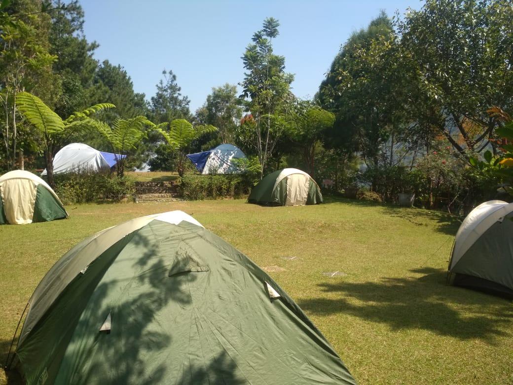 camping ground murah puncak terbaik kecubung