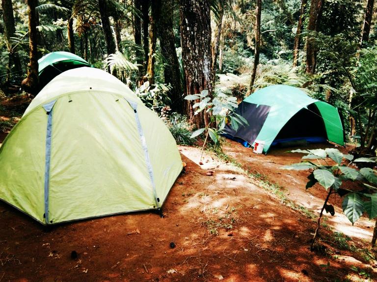 tempat camping keluarga di puncak bogor