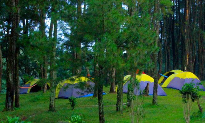 family camp puncak tempat camping di puncak