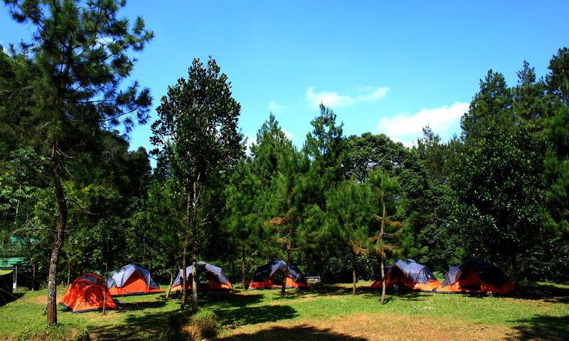 outbound camp puncak bogor