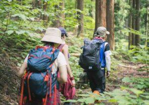 family trekking di puncak bogor